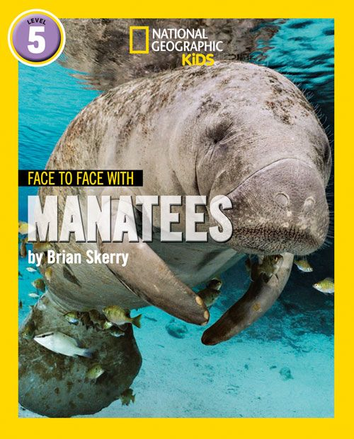 Face-to-Face - Manatees