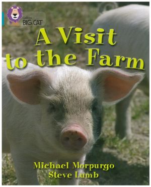 A Visit to the Farm - Level 17